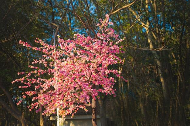 Gefälschte sakura-blumen für dekoration mit wald