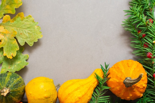 Gefallene blätter von bäumen und orange dekorativen kürbissen und fichtenzweigen auf einem grauen hintergrund, herbsthintergrund