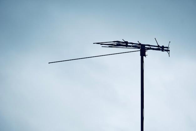 Gefleckter vogel auf analogen fernsehtürmen