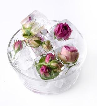 Gefrorene rose