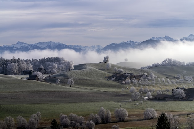Gefrorene schweizer farmen