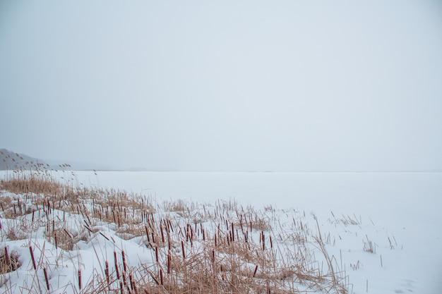 Gefrorener fluss im schnee mit blick auf die küste vom schilf