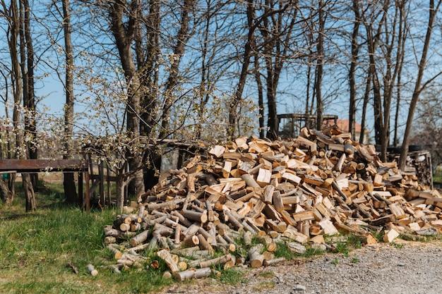 Gehacktes brennholz von verschiedenen baumarten. vorbereitung des brennholzes für den winter.