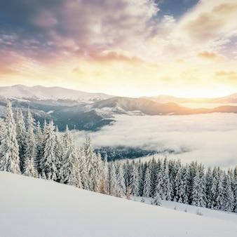 Geheimnisvolle majestätische berge der winterlandschaft