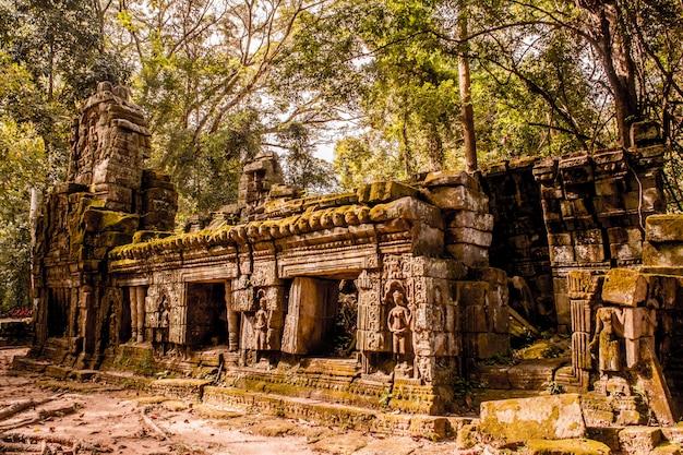 Geheimnisvolle ruinen des alten ta prohm tempels