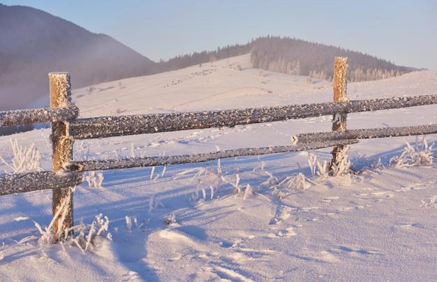 Geheimnisvolle winterlandschaft majestätische berge im winter. magischer schneebedeckter winterbaum. foto-grußkarte. karpaten. ukraine