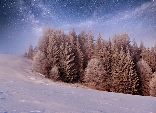 Geheimnisvolle winterlandschaft majestätische berge im winter.