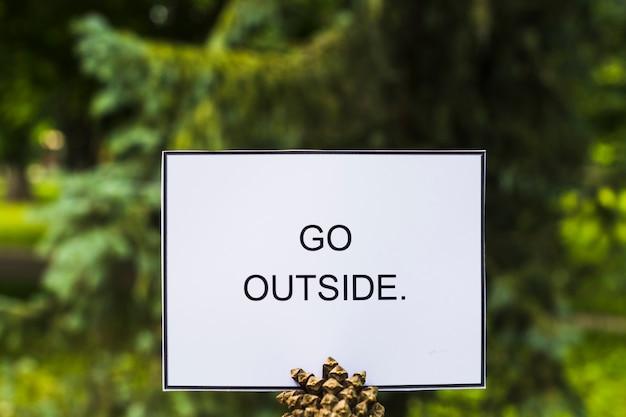 Gehen sie außerhalb der karte auf pinecone gegen grünen baum