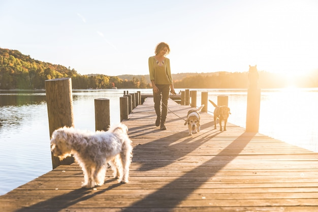 Gehende frau die hunde auf dem dock bei sonnenuntergang