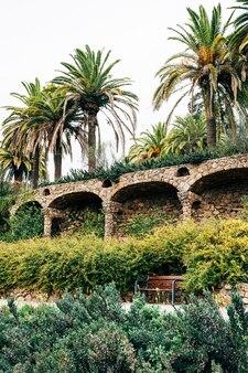 Gehende gassen in güell park barcelona spanien big dattelpalmen