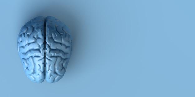 Gehirn auf blauem hintergrund. kreativität. 3d-darstellung.