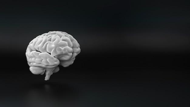 Gehirn auf schwarzem hintergrund