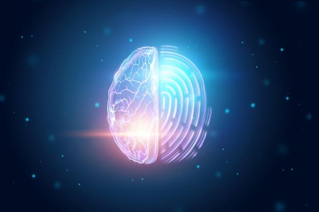 Gehirnhälfte und fingerabdruckansicht von oben
