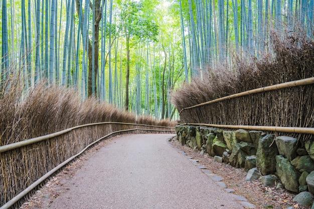 Gehweg in arashiyama bambushainen, kyoto, japan