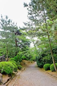 Gehweg-weg-weg mit grünen bäumen im wald. schöne gasse im park. weg durch den dunklen wald