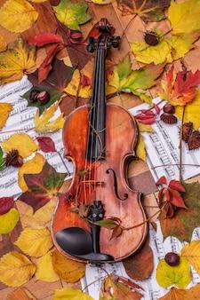 Geige und herbstlaub