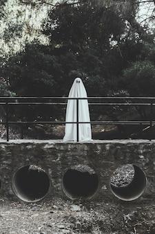 Geist, der auf brücke im park steht