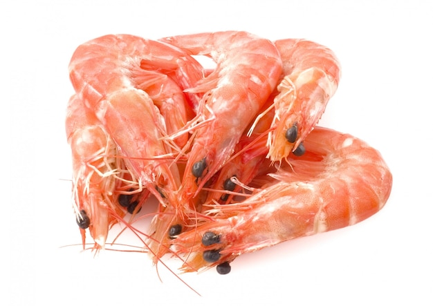 Gekochte garnelen oder tiger shrimps in der weißen platte