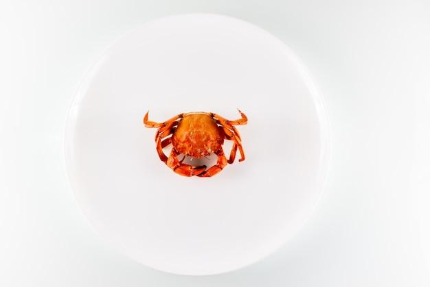Gekochte krabbe auf einem weißen teller