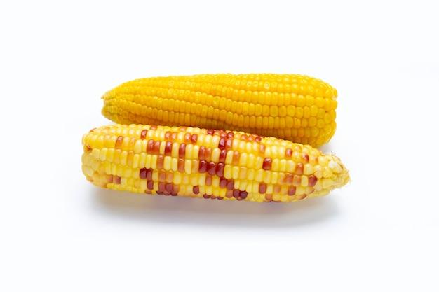 Gekochter mais auf weißem hintergrund.
