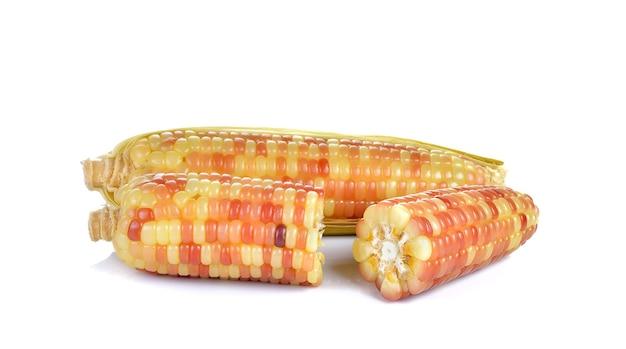Gekochter mais isoliert