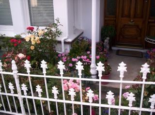 Geländer, zwanzigsten, jahrhundert, eisen, rosen