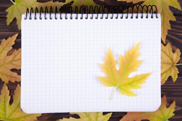Gelb gefallenes ahornblatt liegt auf einem notizblock