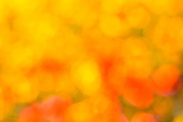 Gelb-orange boke-hintergrundbeschaffenheit des natürlichen herbstes