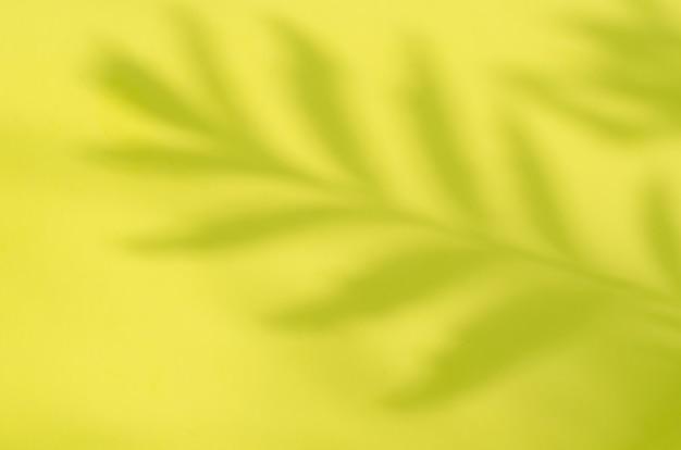Gelb verschwommen mit schatten von pflanzen für werbekosmetik