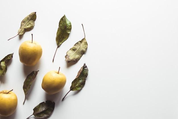 Gelbe äpfel auf einem weißen hintergrund mit alten blättern, gesunde nahrung, landwirtschaft, vegetarismus