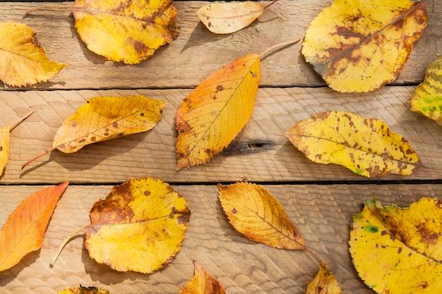 Gelbe blätter der draufsicht auf einem hölzernen hintergrund. herbstlayout, september-oktober-konzept
