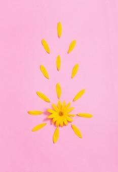 Gelbe blumen auf rosa hintergrund