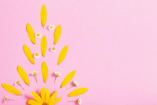 Gelbe blumen auf rosa papier