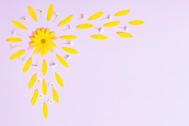 Gelbe blumen auf violettem papier