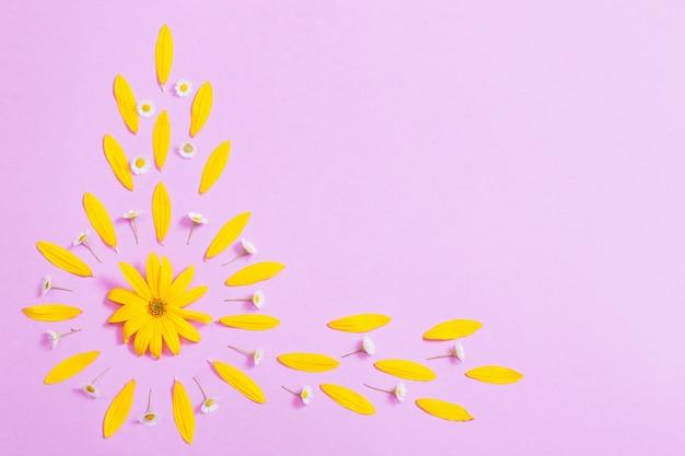 Gelbe blumen auf violettem papierhintergrund