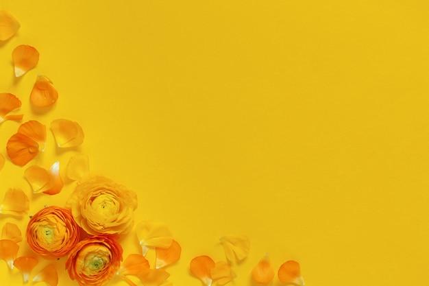 Gelbe blumen und blütenblätter auf einer gelben hintergrundoberansicht