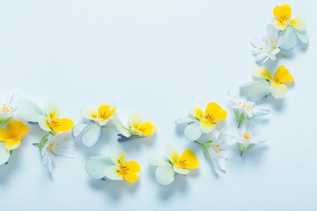 Gelbe bratschenblumen auf blauem hintergrund