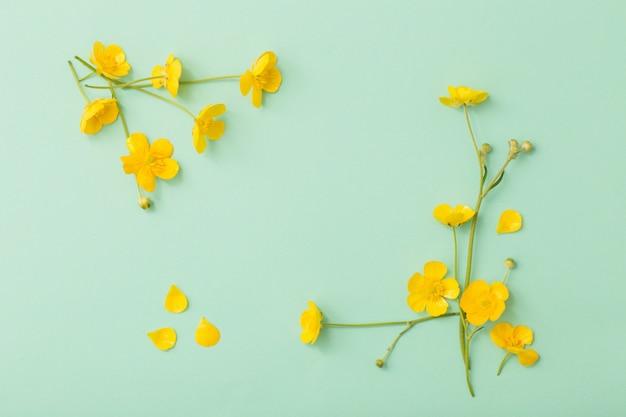 Gelbe butterblumen auf grünem papierhintergrund