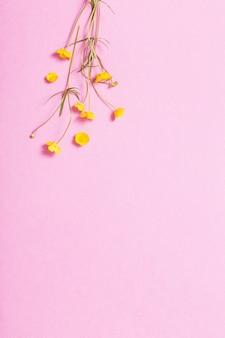 Gelbe butterblumen auf rosa hintergrund