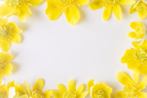 Gelbe butterblumennahaufnahme gestalten ein licht.