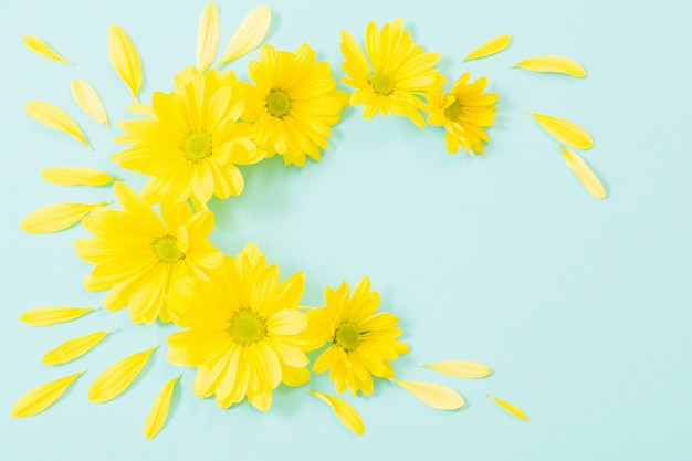 Gelbe chrysantheme auf grünem papierhintergrund