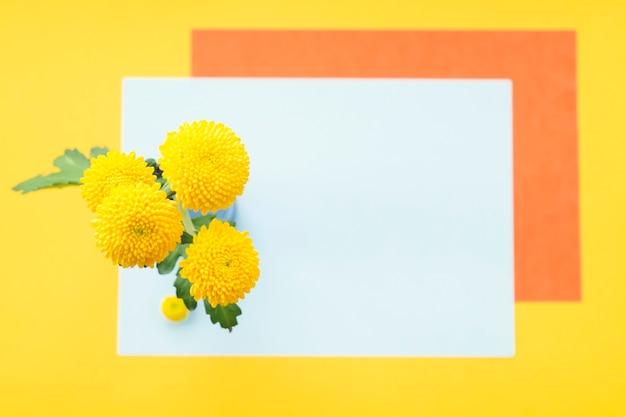 Gelbe chrysantheme über dem leeren rahmen gegen farbigen hintergrund