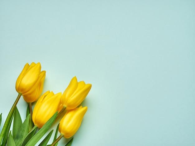 Gelbe frühlingstulpen auf blauem hintergrund, frauen-tageskopienraum