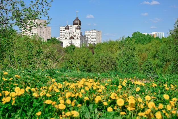 Gelbe gänseblümchen auf dem hintergrund der kirche des reverend seraphim von sarov
