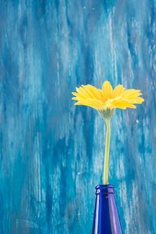 Gelbe gerberablume gegen gemalte schmutzwand
