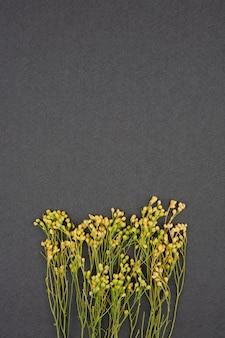 Gelbe getrocknete blumen auf grauem hintergrund