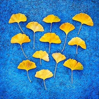 Gelbe ginkgoblätter auf blauem hintergrund