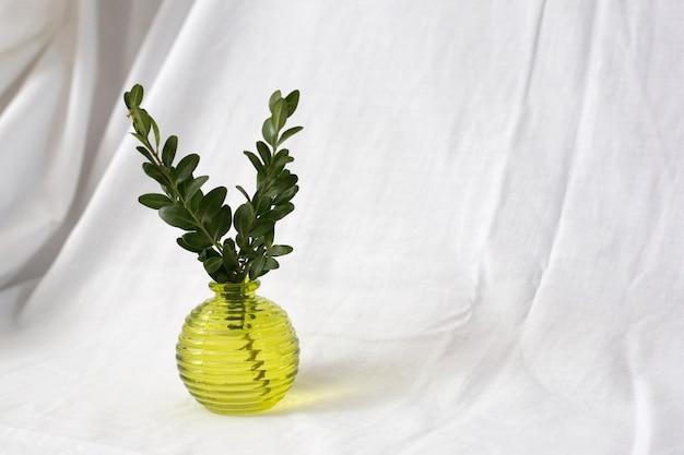 Gelbe glasvase mit grünem zweig
