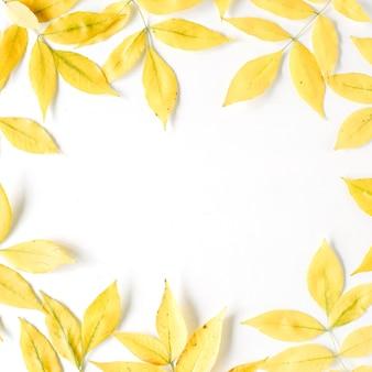 Gelbe herbstherbstblätter. herbstlicher blumenrahmen