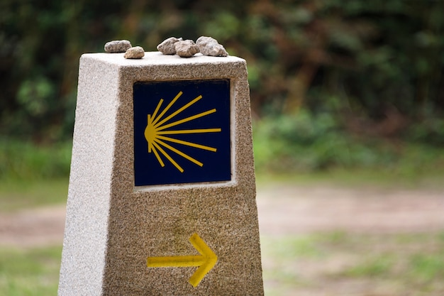 Gelbe jakobsmuschel, touristisches symbol des camino de santiago, das richtung auf camino norte in spanien zeigt.
